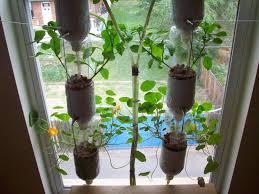 diy indoor herb garden garden flowguineano
