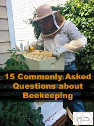15 commonly asked questions about beekeeping