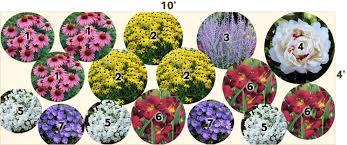 Canadian Garden Zones - butterfly garden 10 u0027 x 4 u0027 perennials from american meadows