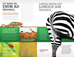 zoo brochure template zebra brochure template design and layout now 02564