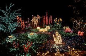 Botanical Garden Bellevue Garden D Lights At Bellevue Botanical Garden Seattleite