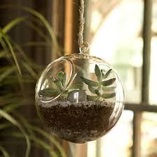 tab11 rakuten global market airplanes terrarium glass planter