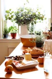diy herb garden diy herb gardens for a healthy life