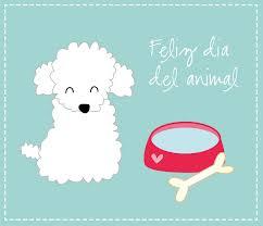 imagenes de animales whatsapp tarjetas del día del animal para whatsapp compartir imágenes de