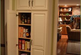 dining room curio cabinets laudable photograph inside cabinet door organizer sweet cabinet