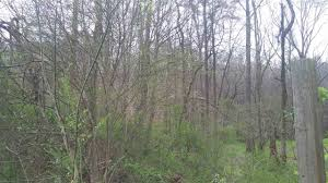 holbert lane knoxville tn 37914 land for sale citizentribune com