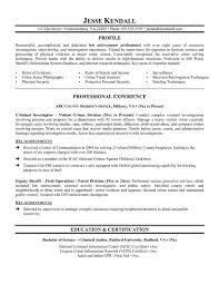 Babysitting Resume Iron Worker Resume Resume Peppapp
