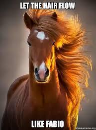 Hair Meme - let the hair flow like fabio ridiculously photogenic horse make