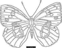 bus preschool coloring pages printable free related 436653