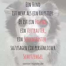 schöne hundesprüche images about hundespruch tag on instagram