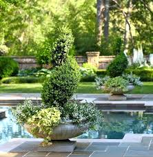 landscape around a pool landscape ideas around a pool landscaping