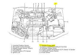 engine schematics hyundai wiring diagrams instruction