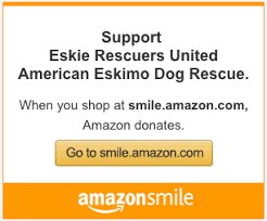 american eskimo dog rescue michigan eskie rescuers united
