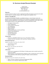 Technical Capabilities Resume Sample Resume For A Business Analyst Resume For Your Job Application