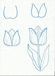 ideas of draw easy drawings step by step 1000 images about drawing