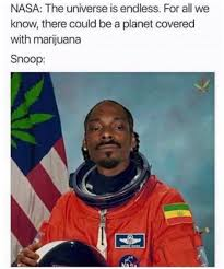 Weed Memes - 50 hilarious weed memes that will keep you laughing for hours