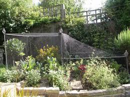 Vegetable Garden Netting Frame by Vegetable Gardens Leaf U0026 Acre
