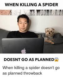 Misunderstood Spider Meme 16 Pics - 25 best memes about spider spider memes