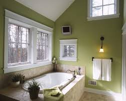comfortable green bathroom with additional home designing