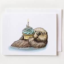 otter birthday card box of 8 serious creatures