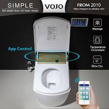 Fancy Bidet Fancy Toilets Fancy Toilets Suppliers And Manufacturers At