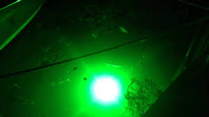 green blob fishing light reviews super bright underwater led light green dock light attract the