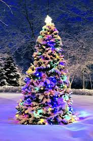 christmas decoratedstmas trees xmas remarkable how to put lights
