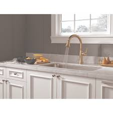 Delta Faucet Cassidy Kitchen by Delta Faucet 9197 Cz Dst Cassidy Champagne Bronze Pullout Spray