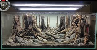 Aquascaping With Driftwood Spiderwood And Driftwood Aquascaping World Forum