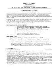 Sample Resume For Oracle Pl Sql Developer by Application Developer Resume Resume For Your Job Application