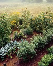 Garden Planning 101 My Mother Planning Your Vegetable Garden Martha Stewart