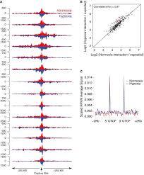 capture u2010c reveals preformed chromatin interactions between hif