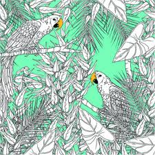 design home book clairefontaine colouring book of tropical birds and forests craft u0026 hobbies