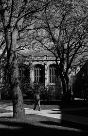 Uchicago Barnes And Noble 89 Best Home Bangladesh And Chicago Images On Pinterest