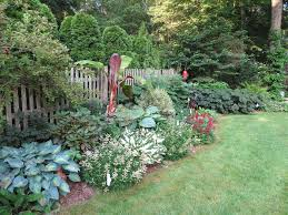 native woodland plants the shade gardening with native plants from woodland phlox
