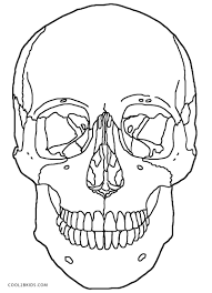 printable skulls coloring pages for kids and skull bones