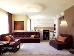 apartments pleasant interior decor for small spaces home art