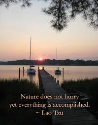 Quotes About Landscape by Carol Chapman Inspirational Quote About Nature From Lao Tzu