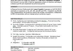 Sap Consultant Resume Sample by Sample Of A Functional Resume Haadyaooverbayresort Com