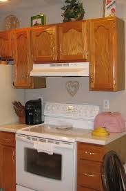 kitchen cabinets or not kitchen cabinets take them up to the ceiling or not