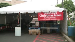 christmas trees on sale before thanksgiving at walmart khon2