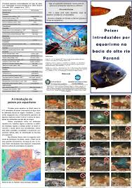 how to avoid fish introductions in brazil education and