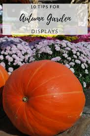 perfecting your autumn display wolff u0027s apple house