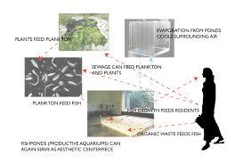 waste food aesthetics aquaculture jack cochran writing and