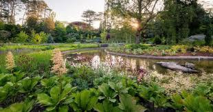 The Royal Botanic Gardens Royal Botanical Gardens Dunneiv Org