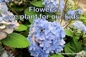 gardening with kids and the flowers we plant the educators u0027 spin