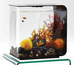 biorb ornament vuur koraal aquastorexl
