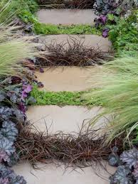 Diy Home Design Ideas Pictures Landscaping by How To Landscape With Groundcover Diy
