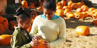 places to pick apples and pumpkins in metro milwaukee