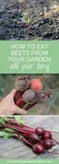 3358 best gardening tips images on pinterest organic gardening